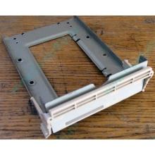 Заглушка для корзины SCSI дисков 55.59903.011 для серверов HP Compaq (Псков)