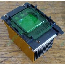 Радиатор HP p/n 279680-001 (socket 603/604) - Псков