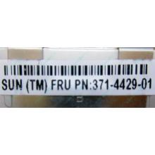 Серверная память SUN (FRU PN 371-4429-01) 4096Mb (4Gb) DDR3 ECC в Пскове, память для сервера SUN FRU P/N 371-4429-01 (Псков)