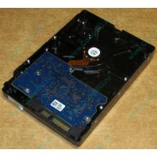 HDD 500Gb Hitachi HDS721050DLE630 донор на запчасти (Псков)