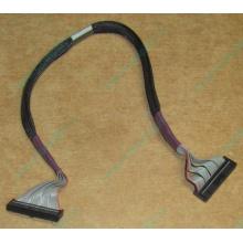 FDD-кабель HP 271946-006 для HP ML370 G3 G4 (Псков)